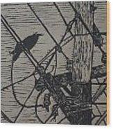 Bird On A Wire Wood Print