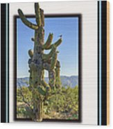 Bird On Cactus Wood Print
