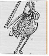 Bird Skeleton Wood Print