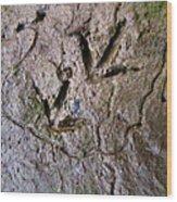 Bird Tracks Wood Print