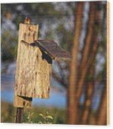 Birdhouse 23 Wood Print