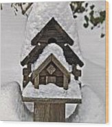 Birdhouse In Snow Wood Print