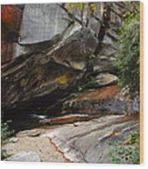 Birdrock Waterfall Wood Print