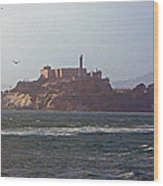 Birds In Free Flight At Alcatraz Wood Print