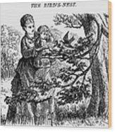 Birds Nest, 1873 Wood Print