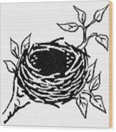 Birds Nest Wood Print