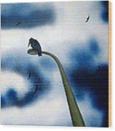 birds of apocalypse III 1 Wood Print