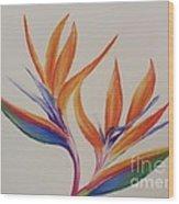 Birds Of Paradise II Wood Print
