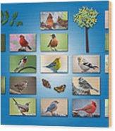 Birds Of The Neighborhood Wood Print