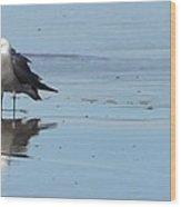 Birds On The Beach Wood Print