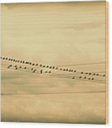 Birds On Wires Back In Time Wood Print