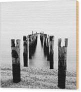 Birds Resting On A Derelict Pier Wood Print by Scott Masterton