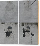 Birth Of A Snowman Wood Print