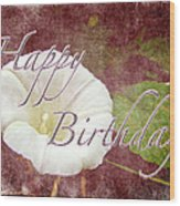 Birthday Greeting Card - Bindweed Morning Glory Wood Print