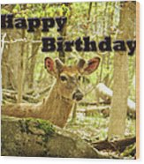 Birthday Greeting Card - Whitetail Deer Buck In Velvet Wood Print