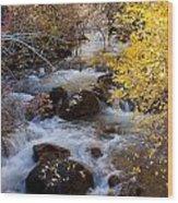 Bishop Creek-2 Wood Print