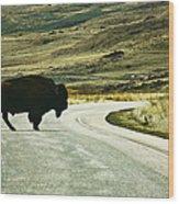 Bison Crossing Highway Wood Print