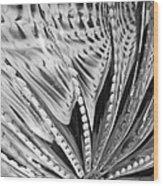Black - White Wood Print by Jan Canavan