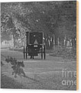 Black And White Buggy Wood Print