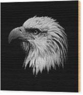 Black And White Eagle Wood Print