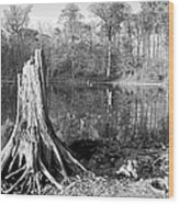 Black And White Fall Alum Creek Wood Print