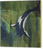 Black and white koi II Wood Print
