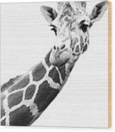 Black And White Portrait Of A Giraffe Wood Print