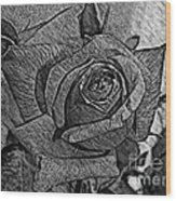 Black And White Rose Sketch Wood Print