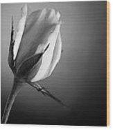 Black And White Soft Rose Wood Print