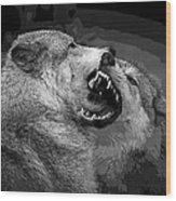 Black And White Wolf Fight Wood Print