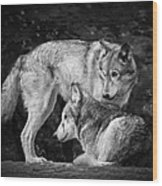 Black And White Wolves Wood Print