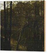 Black Bayou 18 Wood Print