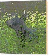 Black Bear In Green Wood Print