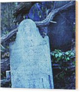 Black Bird Perched On Old Tombstone Wood Print