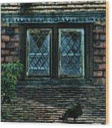 Black Birds Sitting On Roof By Window Wood Print