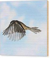 Black-capped Chickadee In Flight Wood Print