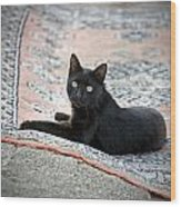 Black Cat On A Persian Rug Wood Print