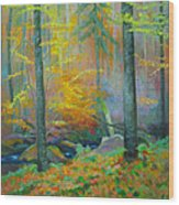 Black Forest Stream Wood Print