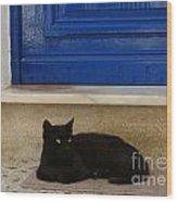 Black Greek Cat Wood Print
