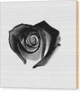 Black Heart-shaped Rose Wood Print