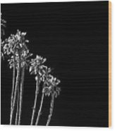black Palms Wood Print