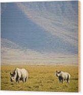 Black Rhinos Walking Across The Crater Wood Print