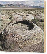 Black Rock Desert Wood Print