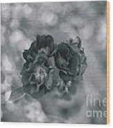 Black Rose With Bokeh Wood Print