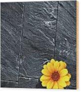 Black Schist Flower Wood Print by Carlos Caetano