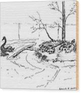 Black Swan And Sliders Wood Print
