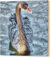 Black Swan Event Wood Print