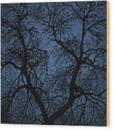 Black Veined Sky Wood Print