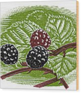 Blackberries, Woodcut Wood Print by Gary Hincks