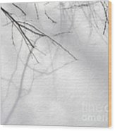 Blackberry Shadows No. 1 Wood Print